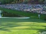 Tiger Woods - tacada certeira