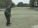 Tiger Woods - hole-in-one